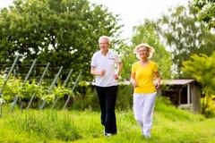 Anziani che corrono nella natura che fa sport Fotografia Stock Libera da Diritti