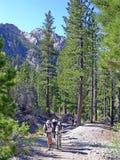 Anziani che fanno un'escursione nelle montagne di primavera vicino a Las Vegas NV Fotografia Stock