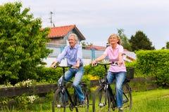 Anziani che si esercitano con la bicicletta Immagini Stock
