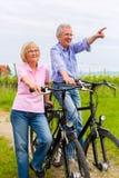 Anziani che si esercitano con la bicicletta Fotografia Stock Libera da Diritti