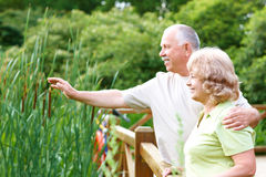 anziani degli anziani delle coppie Immagini Stock Libere da Diritti