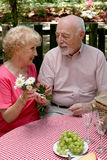 Anziani di picnic - fiori per lei Immagine Stock Libera da Diritti