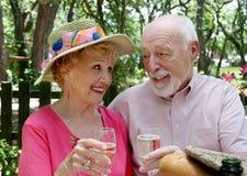 Anziani di picnic - pane tostato di Champagne Fotografia Stock Libera da Diritti