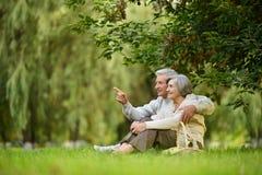 Anziani felici immagini stock
