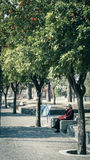 Anziani nel parco Fotografia Stock