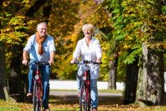 Anziani sulle biciclette che hanno giro in parco Fotografia Stock