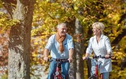 Anziani sulle biciclette che hanno giro in parco Immagini Stock