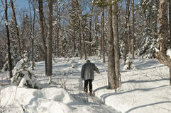 Anziano attivo con gli snowshoes fotografia stock