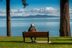 Anziano con una vista Immagini Stock
