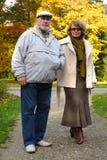anziano delle coppie Immagini Stock