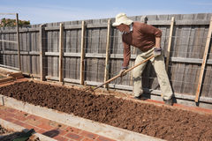 anziano di giardinaggio del giardino della forcella Fotografia Stock Libera da Diritti