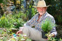 Anziano in giardino Fotografie Stock Libere da Diritti