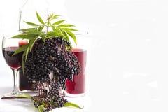 Anziano nero Berry Fruit, liquore, vino e cordiale Fotografie Stock