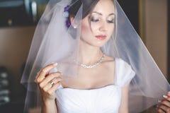 Anziehende Braut schaut durch den Schleier Stockbilder