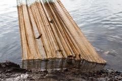 Anziehender naher Nettolehm der Fische Stockbilder