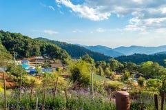 Anziehungskräfte in Cham Thailands Montag, Chiang Mai, Thailand - Tourist Lizenzfreies Stockbild