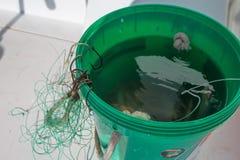 Anzuelos para el primer de pesca con cebo de cuchara con cebo de cuchara fotografía de archivo