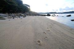 Ao海滩普吉岛参议员 库存照片