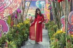 Ao戴传统越南女性服装 免版税图库摄影
