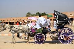 Ao bazar com koetse Imagens de Stock Royalty Free