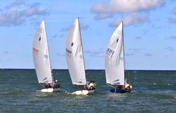 Ação da raça da regata da navigação Fotografia de Stock