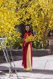Ao Dai obywatela Wietnamska suknia Obraz Royalty Free