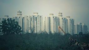 Ao lado da floresta verde ao lado dela é uma cidade com construções altas Fotografia de Stock