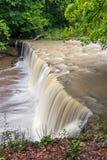 Ao lado de Anderson Falls Foto de Stock Royalty Free