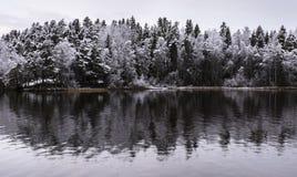 Ao lado do lago na primeira vez da neve Foto de Stock Royalty Free