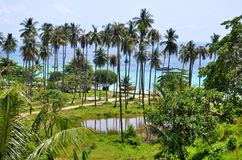 Ao Loh muczenia Dee plaża przy Phi Phi wyspą Obrazy Stock