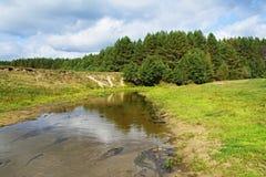 Ao longo do rio Imagem de Stock