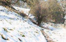 Ao longo do rio Derwent Imagens de Stock