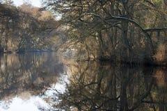 Ao longo do rio Derwent Fotos de Stock