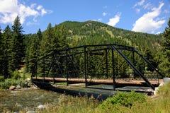 Ao longo do rio do Gallatin Fotografia de Stock Royalty Free