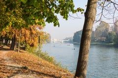 Ao longo do Rio Pó no outono, Turin Foto de Stock Royalty Free