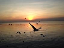 AO Nang, Krabi-Provinz stockbilder
