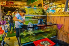 AO NANG, THAILAND - MARCH 05, 2018: Unidentified people inside of a restaurant, and a fish tak with lobsters ready to. Cook at Ao Nang town, in Thailand Stock Images