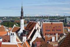 Août au-dessus des toits de vieux Tallinn Photographie stock libre de droits