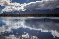 26 août 2016 - pêche sur des lacs de gamme d'Alaska centrale - conduisez 8, route de Denali, Alaska, offres d'un chemin de terre  Photo stock