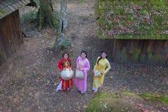 Ao yai dress Royalty Free Stock Images