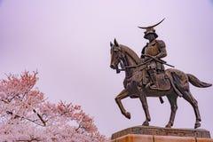 A statue of Masamune Date on horseback entering Sendai Castle in full bloom cherry blossom, Aobayama Park, Sendai, Miyagi, Japan. Aoba Castle stock photo