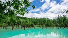 Aoiike Blue pond in Biei, Hokkaido in summer. Japan stock images