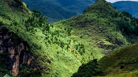 Aoraki góra Zdjęcia Stock