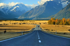 Aoraki-Mount Cook. In New Zealand Stock Images