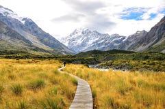 Aoraki Mount Cook National Park Stock Photography