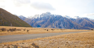 Aoraki mount Cook New Zealand Royalty Free Stock Photography