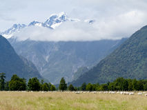 Aoraki, Mt Cook highest peak of Southern Alps, NZ Royalty Free Stock Photography