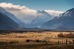 Aoraki zet Cook, Nieuw Zeeland op Stock Fotografie