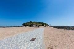 Aoshima海岛在宫崎,日本 免版税库存照片