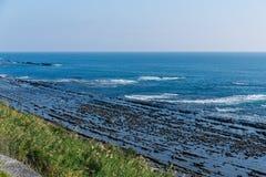 Aoshima Island coast Stock Image